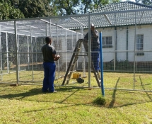 cat & dog Kennels, dog cages West rand