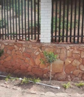 electric fencing Kloofendal